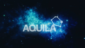 Video for AQUILA® 3.0 By IMEXHS®