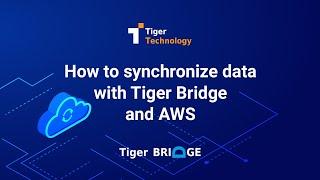 Video for Tiger Bridge